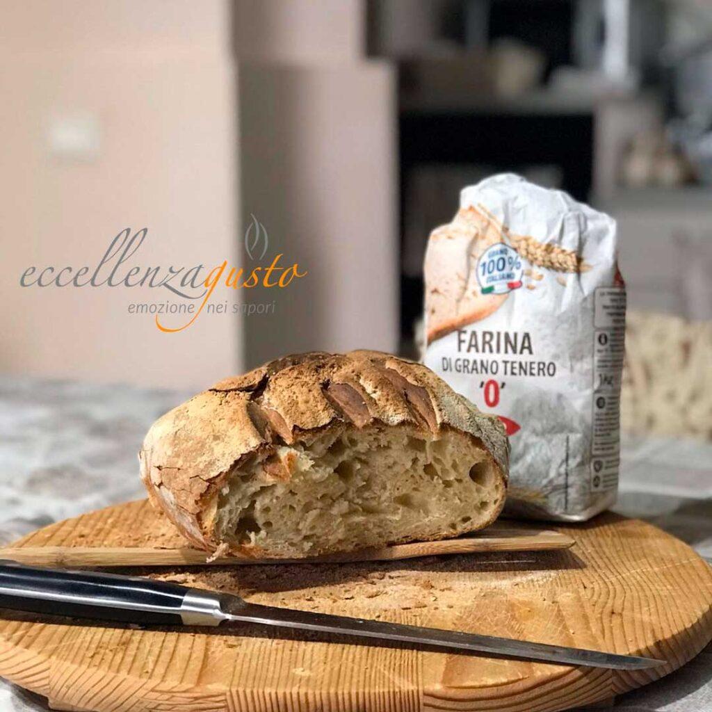 Pane toscano senza sale eccellenza gusto